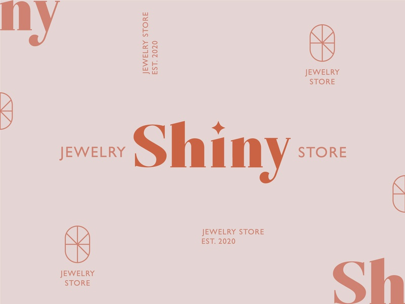 Shiny Brand Concepts minimalist typography logo type logo design design graphic design identity brand identity brand logo