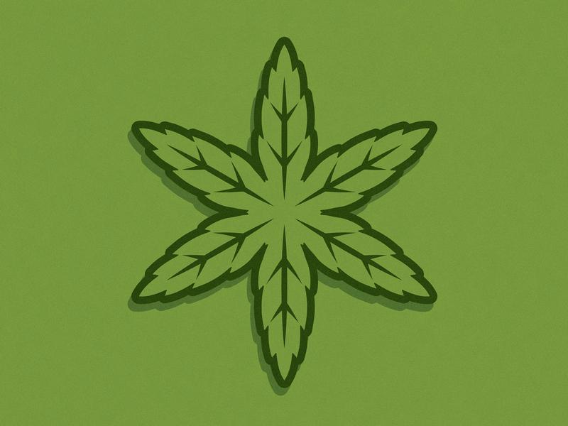 Chicago Star Leaf sticker illustration leaf weed cannabis star