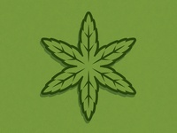 Chicago Star Leaf