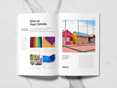 Brochure design for a Paint Company (BIXTA) magazine brochure design packaging brand identity design paint