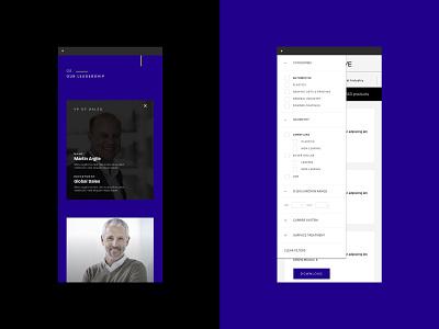 Silberline Website branding web design ux ui interactive