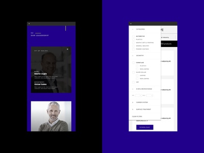 Silberline Website