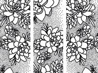 Polka Dots + Succulents