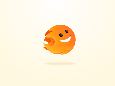Burnie orange icons design illustration branding logo web app ios