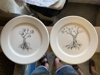Ceramic doodling 🌳 drawings sketch illustration nature illustration trees dishes ceramics ceramic tree