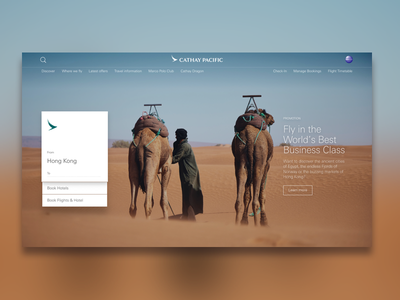 Airline Site Design search type layout landing concept draft