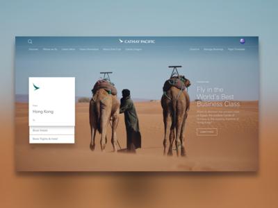 Airline Site Design