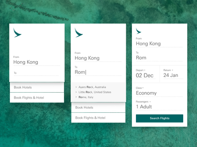 Flight Search Widget cathay pacific airline travel lookup widget search flight