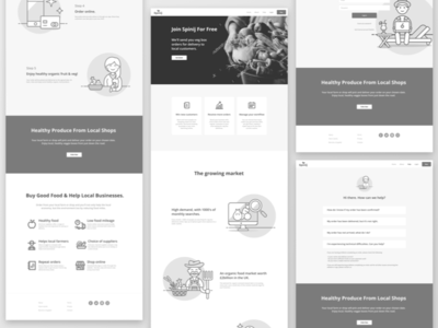 Spinij Wireframes website illustrations fruit fresh food delivery veg box landing page wireframes