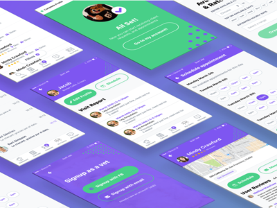 Paw - App for Veterinarians success signup card profile ux ui purple colors onboarding app