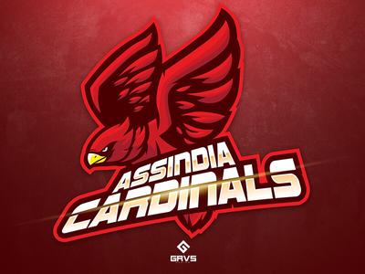 Assindia Cardinals sport team