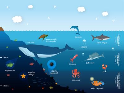 Ocean Encyclopedia Page Design