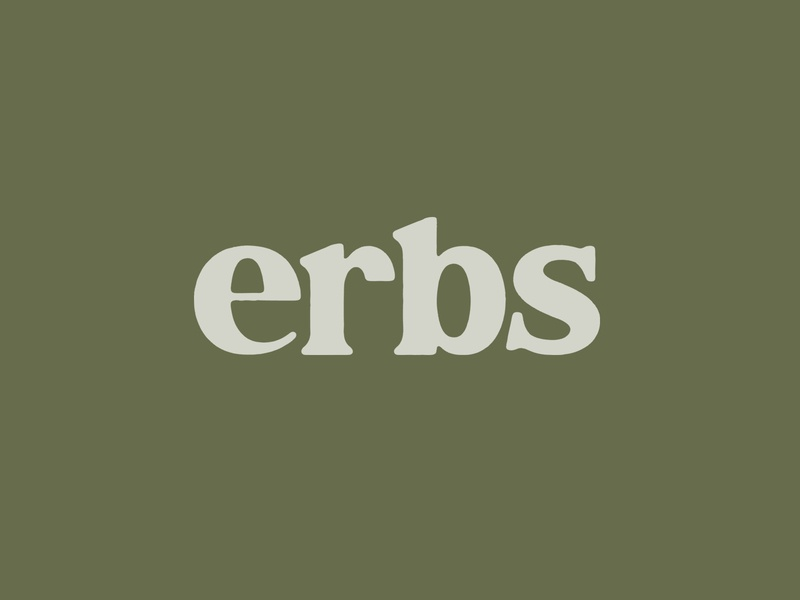 Custom 'Erbs' Lettering Concept branding drawing logo type typography lettering illustration