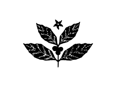 Coffee Plant Concept Three