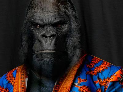 Gorilla Ankara