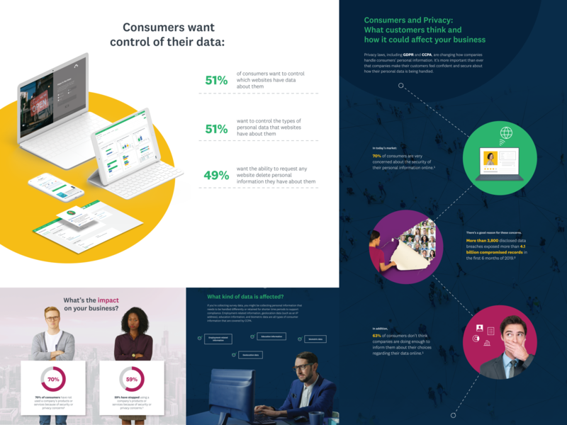 Consumers and Privacy infographic privacy consumer visual design infographic