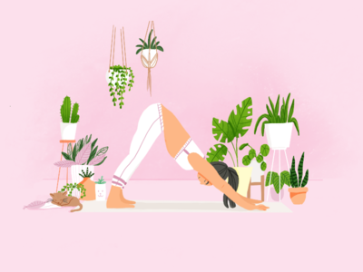 Plants, yoga and cat