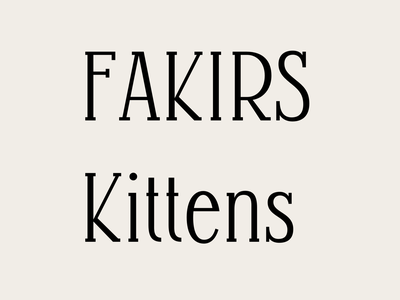 K. font design lettering font type design typography type
