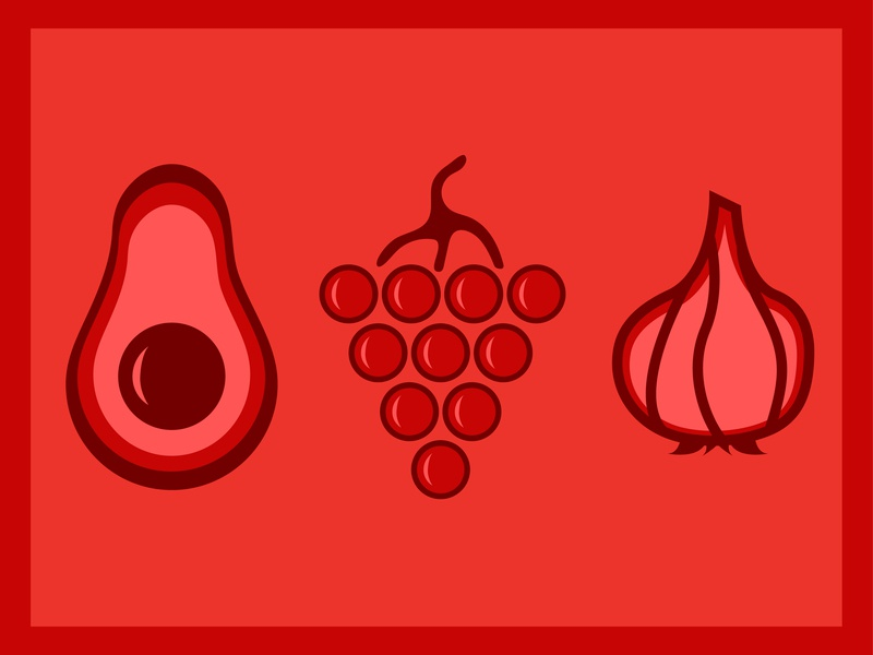 Not for Pets Illustration icon set icons red monochromatic color social media garlic grapes avocado food illustration food thick lines line vector illustrator illustration