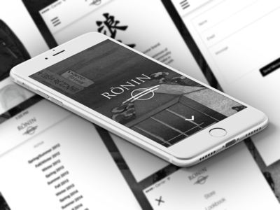 Ronin Division - Mobile Website Redesign