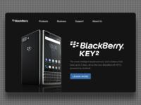 Blackberry Website Concept