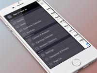 iPhone app side menu