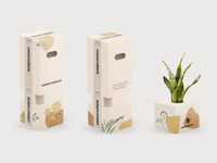 Conservatorie Packaging Boxes pattern ecommerce development brand big team studio abstract vintage logo identity illustration vector cream color concept branding concept plants packaging branding