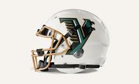 YEFI Branding Helmet