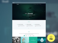 Freebie - Brandi Creative One Page Multi-Purpose PSD Template