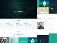 Freebie - Brandi One Page Template PSD