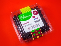 Fruberries Branding