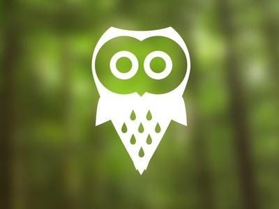 Owl owl icon logo logotype bird forrest brand design illustration