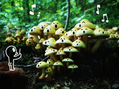 Forest Orchestra mushrooms mushroom forest procreate art procreate shrooms pictures photography illustration