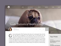 Blog Design - sample post