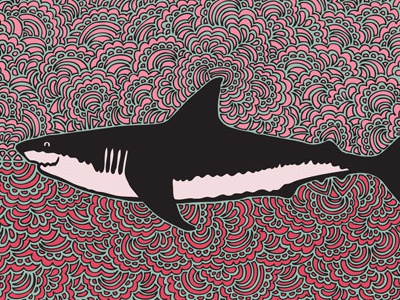 Shark Drawing Meditation