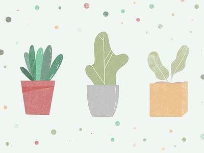 Plant Illustration 001 plant illustration minimal modern procreate illustration plant