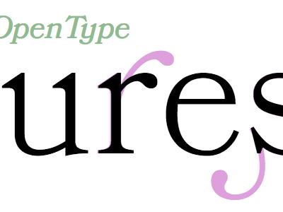 OpenType features opentype features bookmania typekit practice typekit
