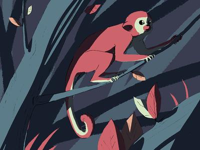 A little monkey