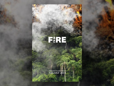 amazon's on fire 11x17 fire poster 2019 amazon rainforest wildfire