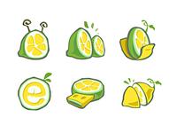 2005 Lemon