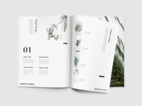 Book of Plants (2)