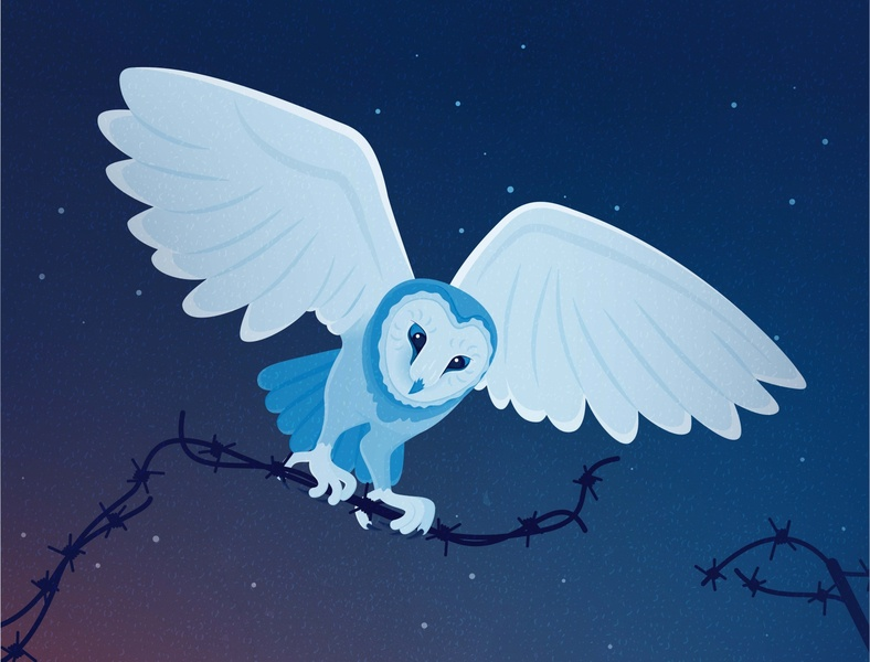 rescue corona coronavirus rescue night vector illustration barn owl owl wild animal animals illustration