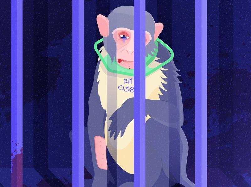 Money, Money, Money wild animals ape monkey macaque experiments illustration voilence poison toxic cruelty to animals cruelty animal illustration animal protection