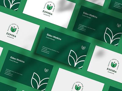 Éxpora Logo Showcase design branding flat minimal design minimal logo