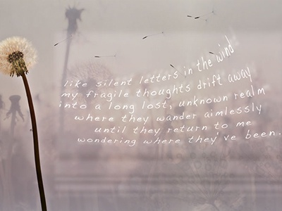 Letters photography photoshop graphic poetry summer