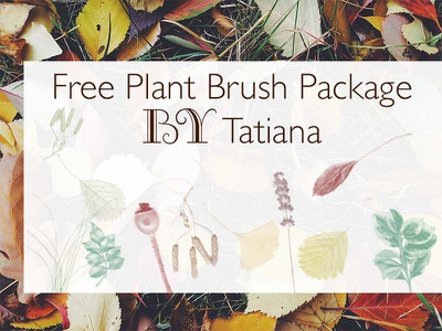 Plant Brush Package leaves photoshop brushes ressources autumn brushes nature