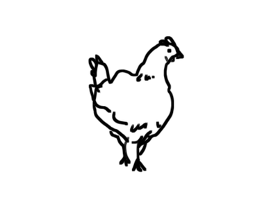 Chicken digital art design digital illustration clip studio bw flat illustration lineart