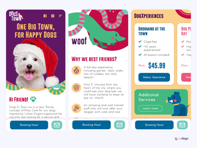 Dogs in Town - Happy Dog Day Care in Sydney AU sydney colombia dogstudio happy dogs day care doggy dogs dog day care