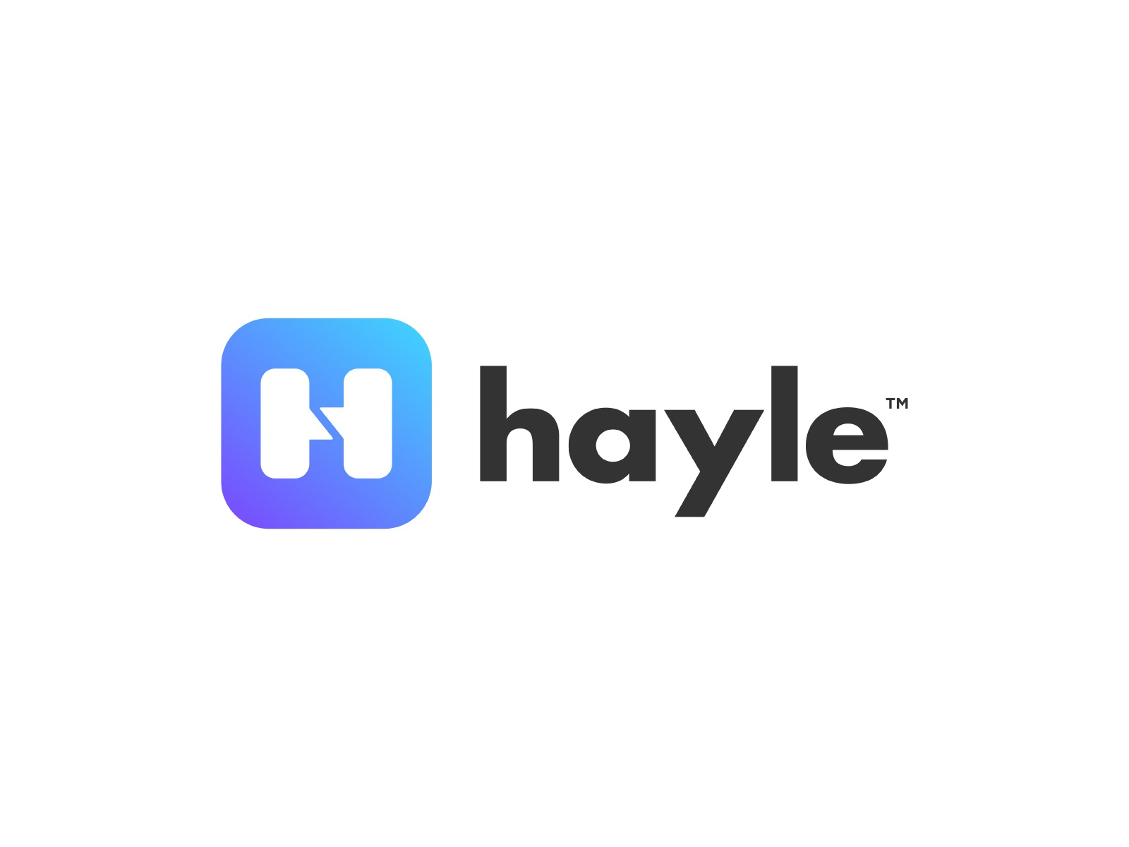 Hayle 2.0 identity mark icon logotype logo ice text box hidden meaning chat bubble h app hayle