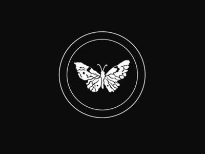 butterfly butterfly drawingoftheday illustration procreate applepencil ipadpro